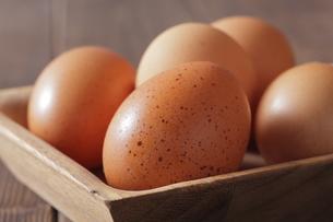 赤卵の写真素材 [FYI00111272]