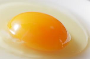 生卵アップの写真素材 [FYI00111285]