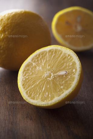 レモンの素材 [FYI00111374]