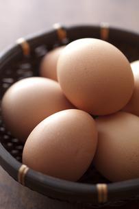 卵の写真素材 [FYI00111414]