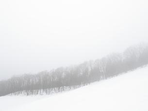冬の山の写真素材 [FYI00111417]