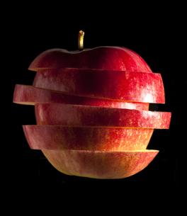 りんごの写真素材 [FYI00111495]
