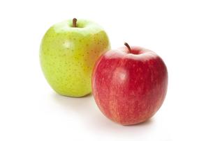 りんごの写真素材 [FYI00111499]