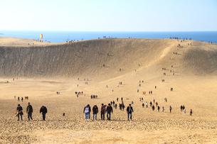 砂丘の写真素材 [FYI00111703]