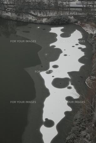 南京 莫愁湖の写真素材 [FYI00112182]
