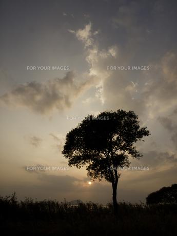 琵琶湖の夕焼けの写真素材 [FYI00112614]
