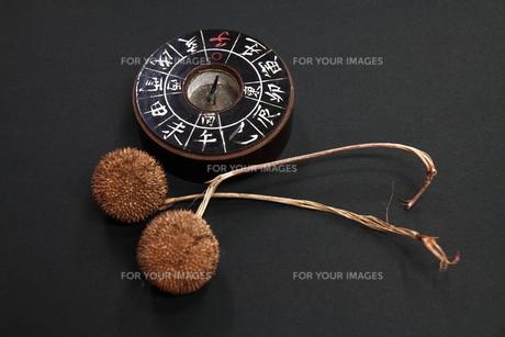 昔の磁石と木の実の写真素材 [FYI00112680]
