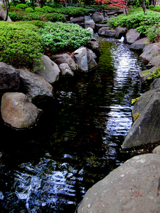大田黒公園の川と岩場の写真素材 [FYI00112914]