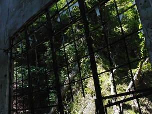 大久野島の廃墟の写真素材 [FYI00112980]