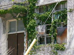 大久野島の廃墟の写真素材 [FYI00113015]
