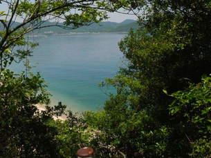 森から覗く青い海と島の写真素材 [FYI00113041]