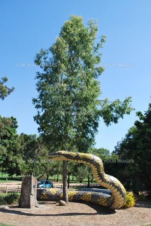 大蛇の写真素材 [FYI00113093]