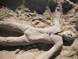砂人形の素材 [FYI00113313]