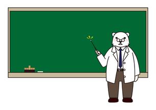 黒板とクマの教師の素材 [FYI00113826]