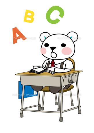英語の勉強をするクマの生徒の素材 [FYI00113847]
