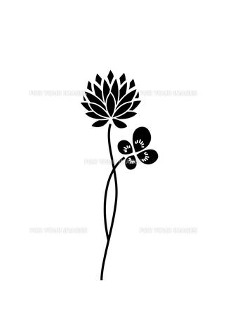 モノクロのクローバーとシロツメ草の素材 [FYI00113849]