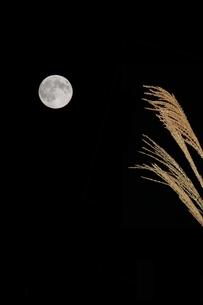 中秋の名月の写真素材 [FYI00113892]