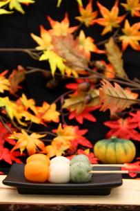 秋の味覚の写真素材 [FYI00113907]