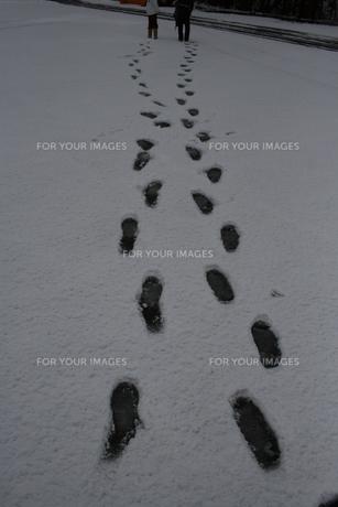 雪の上の足跡の写真素材 [FYI00114043]