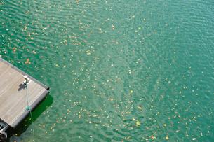 奥多摩湖に浮かぶ桟橋と落ち葉の写真素材 [FYI00114056]