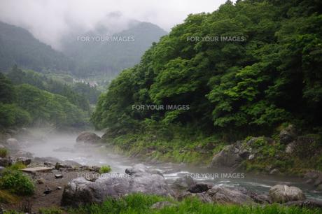 雨上がりの霧に包まれる御岳渓谷の写真素材 [FYI00114086]