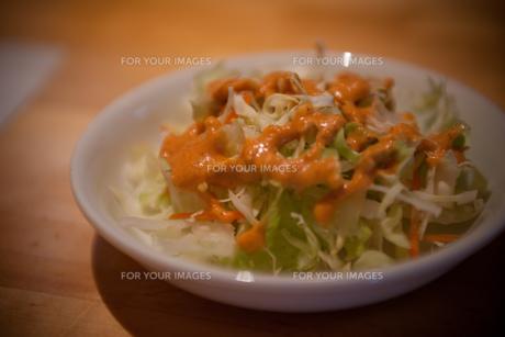野菜をお食べの写真素材 [FYI00114134]