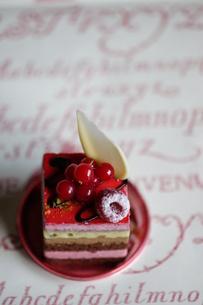 カラフルで四角いケーキの写真素材 [FYI00114266]