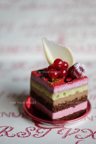クランベリーと赤すぐりのケーキの素材 [FYI00114278]