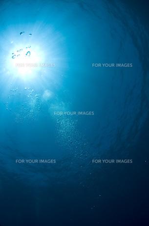 海の中から太陽光の写真素材 [FYI00115025]