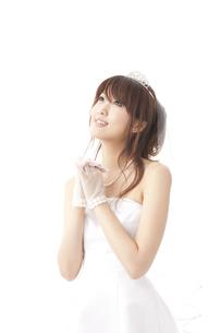花嫁の願いの写真素材 [FYI00115184]