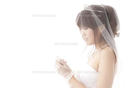 花嫁姿の写真素材 [FYI00115196]