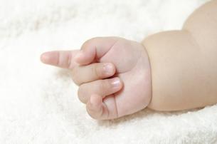 生後6ヵ月のムチムチ赤ちゃんの手の素材 [FYI00115229]