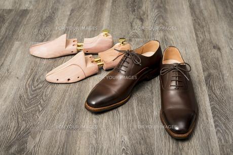 男性用の茶色い革靴とシューキーパーの写真素材 [FYI00115265]