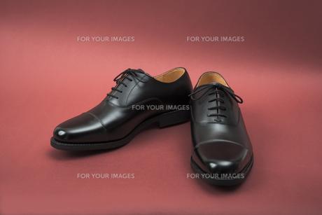 男性用の黒い革靴の写真素材 [FYI00115287]