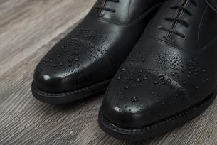 濡れた男性用の革靴 つま先アップの写真素材 [FYI00115297]