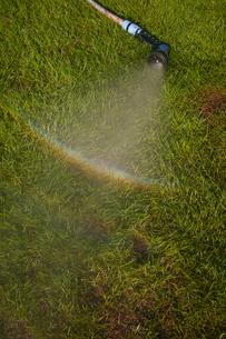 虹のシャワーの写真素材 [FYI00115447]