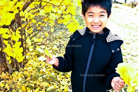 イチョウの木の下の男の子の素材 [FYI00116202]
