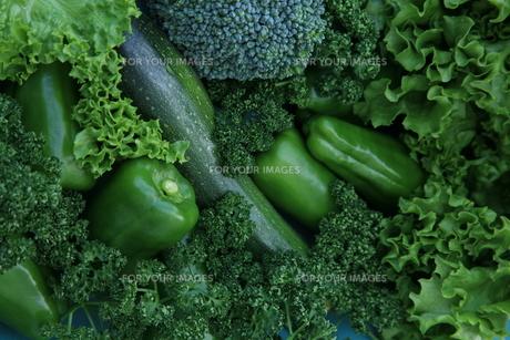 野菜の写真素材 [FYI00116572]