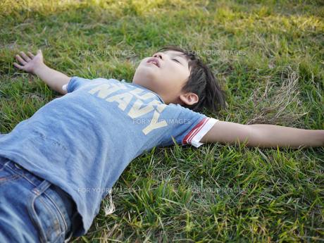 芝生で寝る子供の写真素材 [FYI00116603]