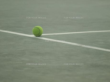 テニスボールの写真素材 [FYI00116657]