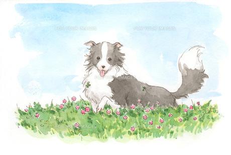 花の中の犬の素材 [FYI00116713]