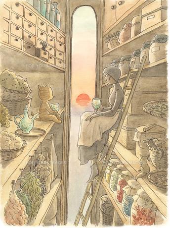 猫と女性と夕日の素材 [FYI00116723]