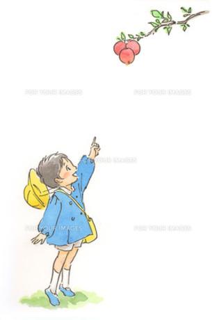 柿を指差す男の子の素材 [FYI00116742]