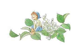 白い花と笑顔の小人の素材 [FYI00116768]