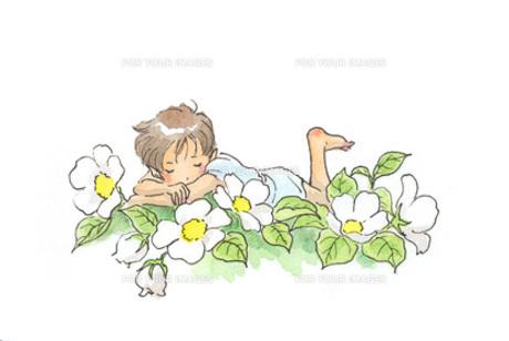 花の中で眠る小人の素材 [FYI00116779]