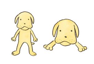 おとぼけ顔の犬の素材 [FYI00116780]
