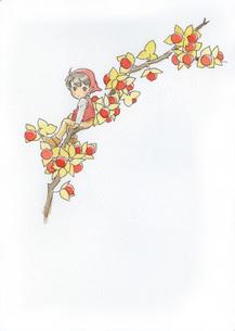 赤い実の枝と小人の素材 [FYI00116783]