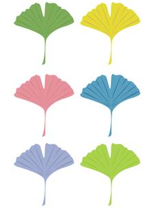 イチョウの葉6色セットの写真素材 [FYI00116865]