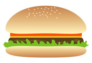 ハンバーガーの写真素材 [FYI00116891]