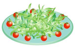プチトマトのサラダの写真素材 [FYI00116901]